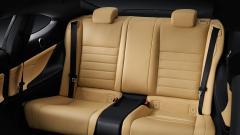 Clove Leather