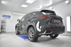Lexus NX Models